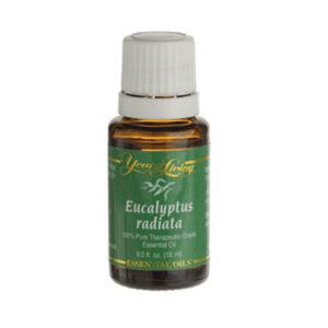 Eucalyptus radiata – 15ml